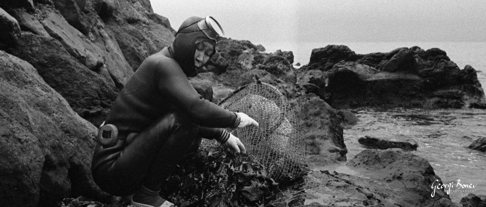 Haenyeo diver checking the catch of the day, Korea