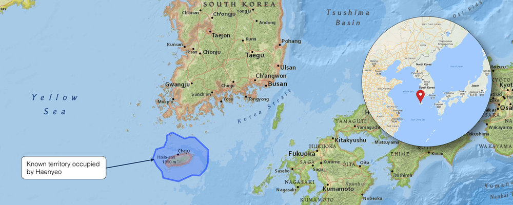 HAENYEO PEOPLE OCCUPIED TERRITORY IN KOREA