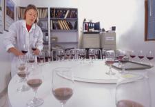 winelab.jpg