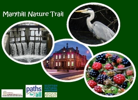 MBHT_Maryhill Nature Trail Artwork Image.jpg