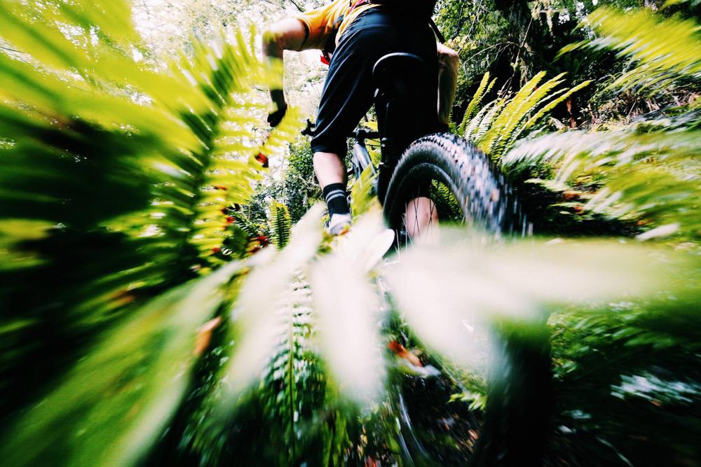 someoneisalwaysfaster: source - bikemag