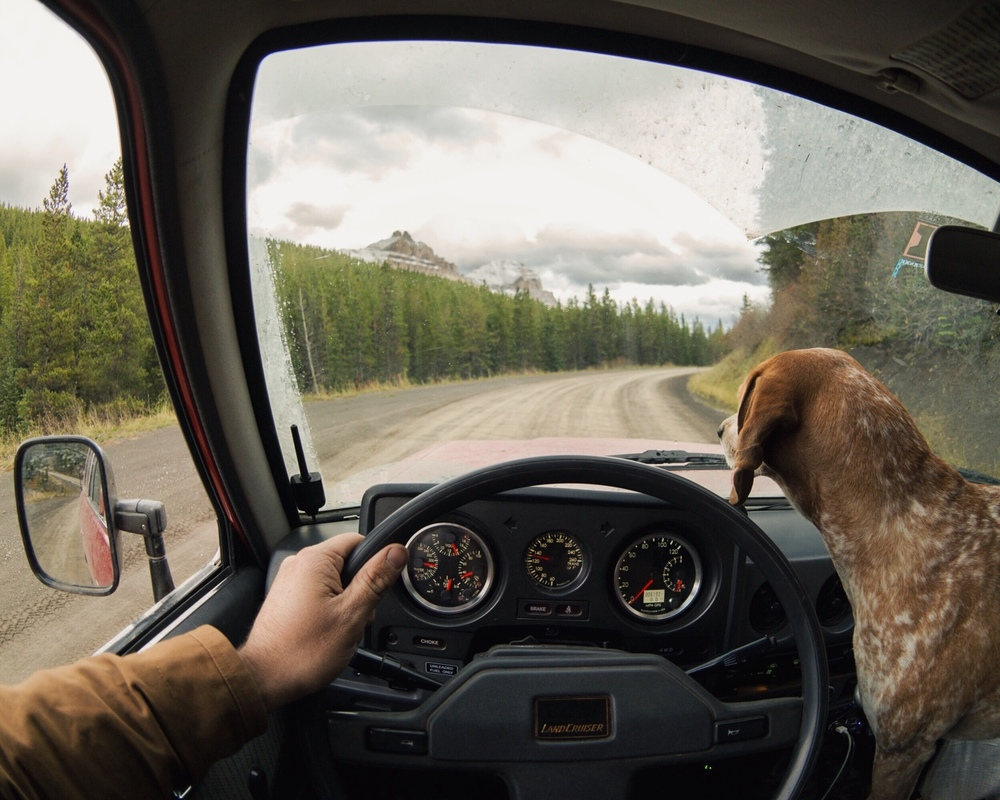 maddieonthings :     Land crusin' through Crowsnest Pass, Canada