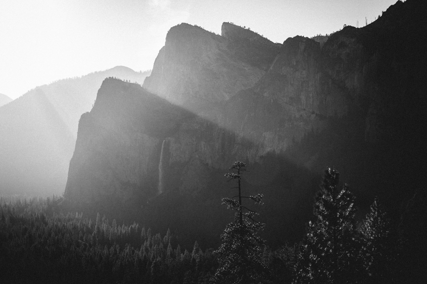 adammoranphotography :     Yosemite.