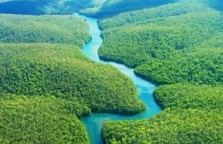 Foresta amazzonica0