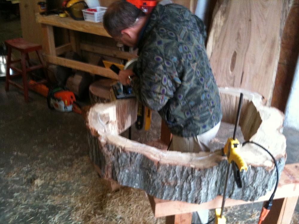 chainsaw tree shavings