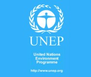 united nations billion tree campaign