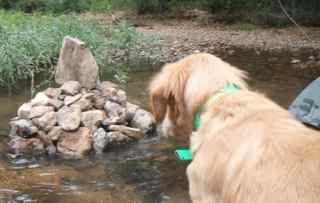 creek rock art