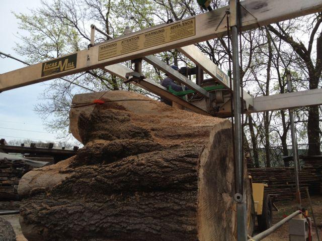 Cramer Children's Center tree to table