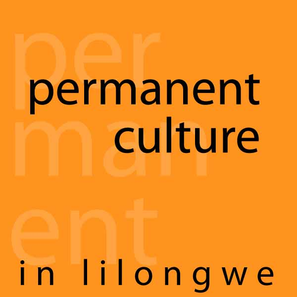 Permaculture - Permanent Culture in Lilongwe