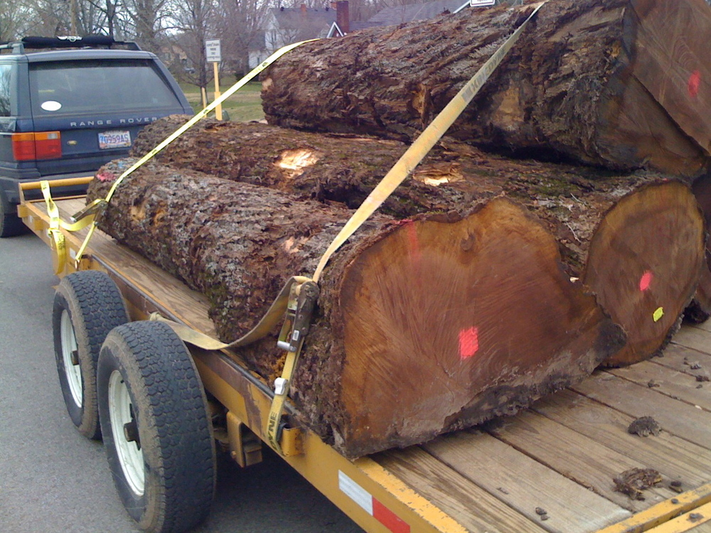 Walnut logs headed to the RWF studio