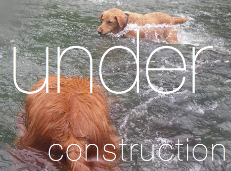 This page is new and under construction. Mattie was under water in beautiful Cypress Creek - my previous back yard.