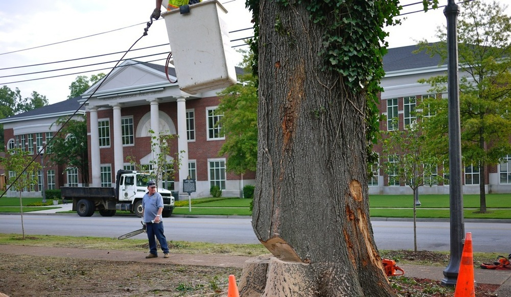 tourism oak lectern5.JPG