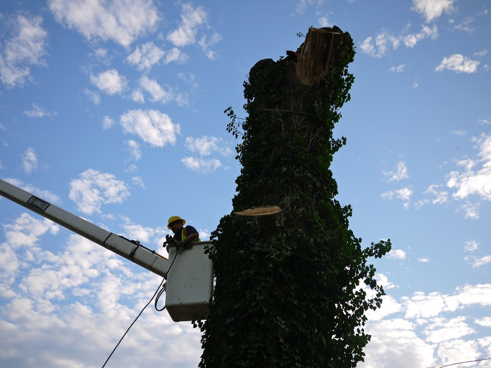 tourism oak lectern6.JPG