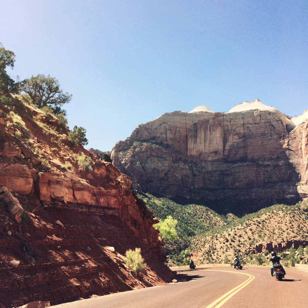 A pack of bikers speed around the winding road that descends to the floor of Zion.