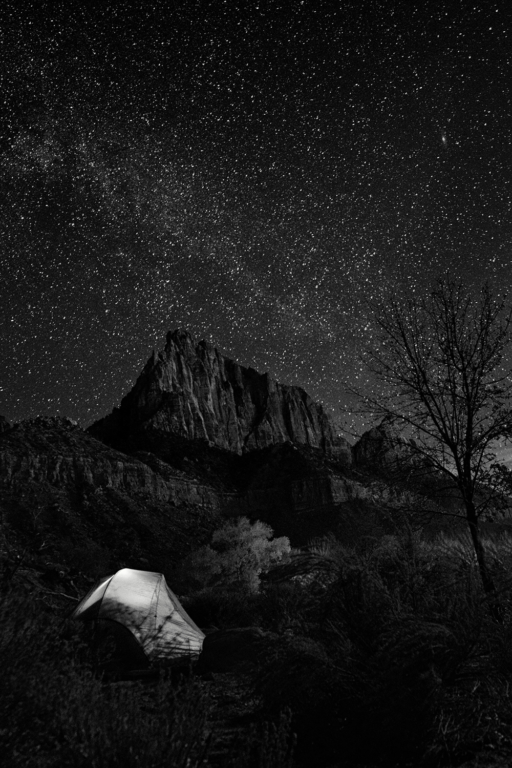 Taken on Thanksgiving night 2014, this is how I spent my holiday - alone under the stars.