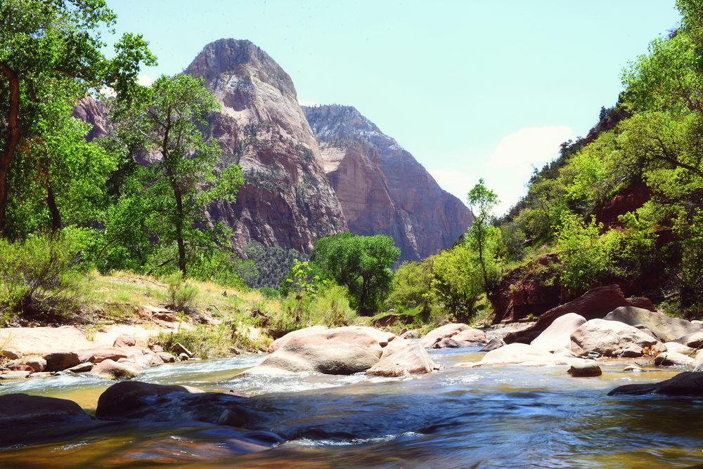 The Virgin River flows through Zion; it's chilly waters made for a nice break from the heat.