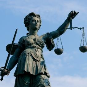 Court Respresentation - Level 4