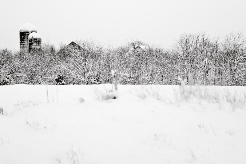 B&W: local farm after snow storm