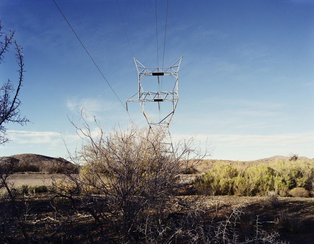 One Arm, Badger Springs Road, Near Cordes Junction, Arizona, 2012