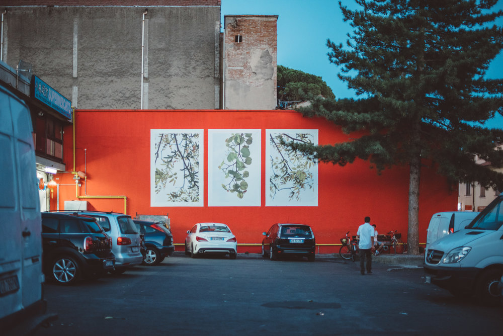Prato, July 2016. A view on Piazza dell'Immaginario, a corner in the local Chinatown brought back to new life by Dryphoto, a local association working with contemporary urban art to redevelop and improve some forgotten and degraded areas of Chinatown.