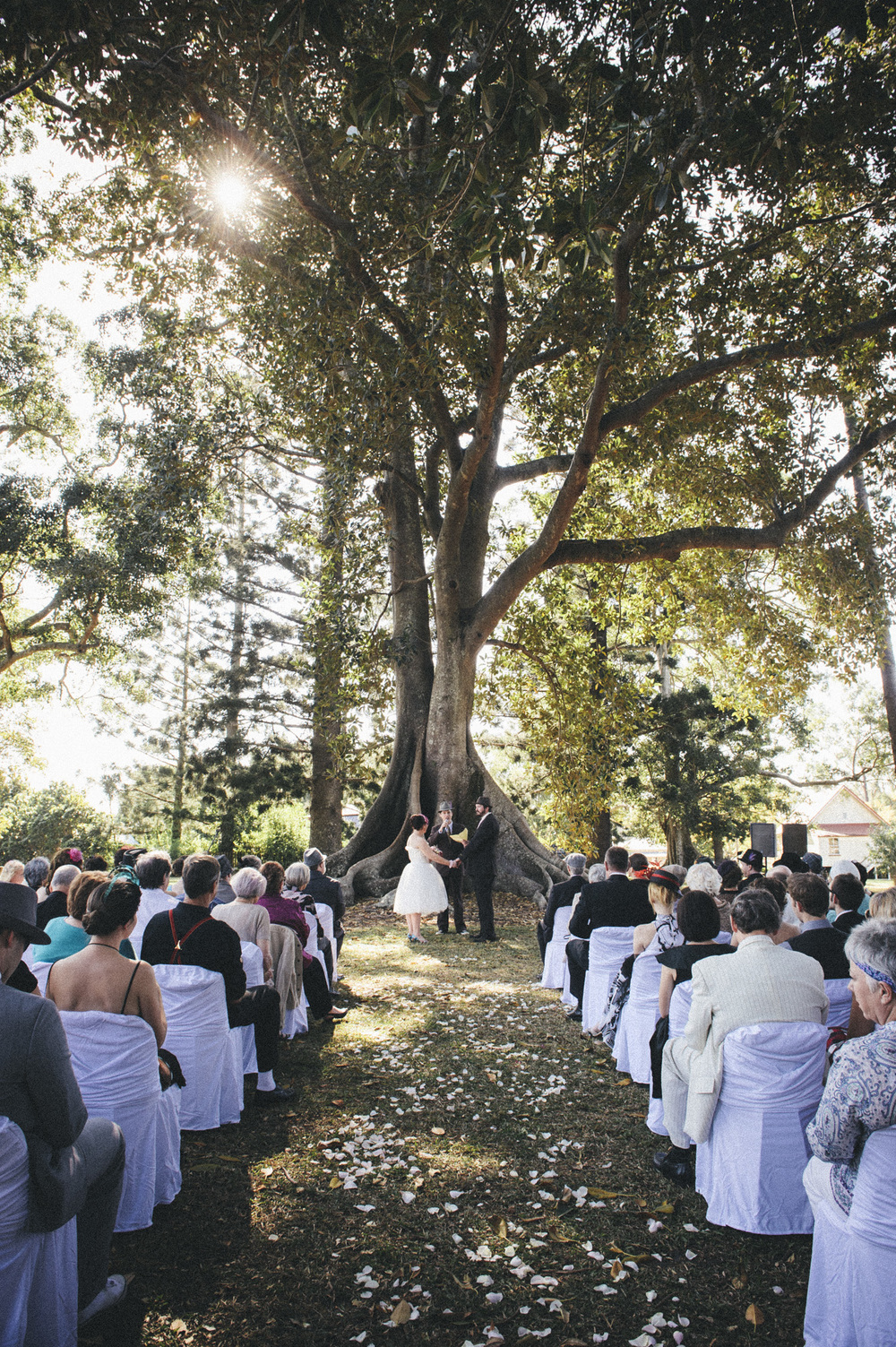 old petrie town wedding  |  fig tree ceremony  |  brisbane wedding photography  |  fuschia photography