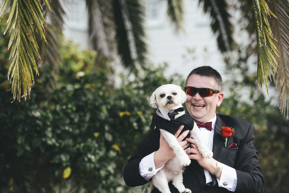 groom with his dog     brisbane wedding photography     fuschia photography