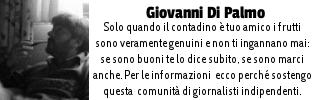 Giovanni-di-Palmo.jpg