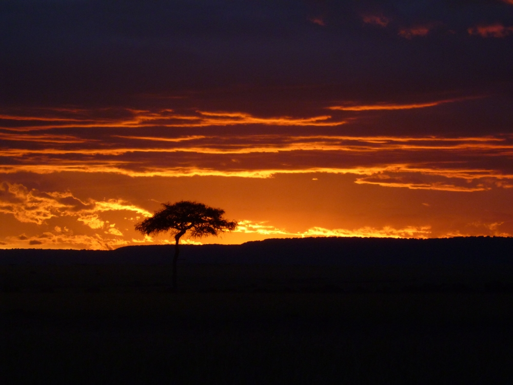 Rack up miles and spend your next anniversary watching sunsets in the African savannah