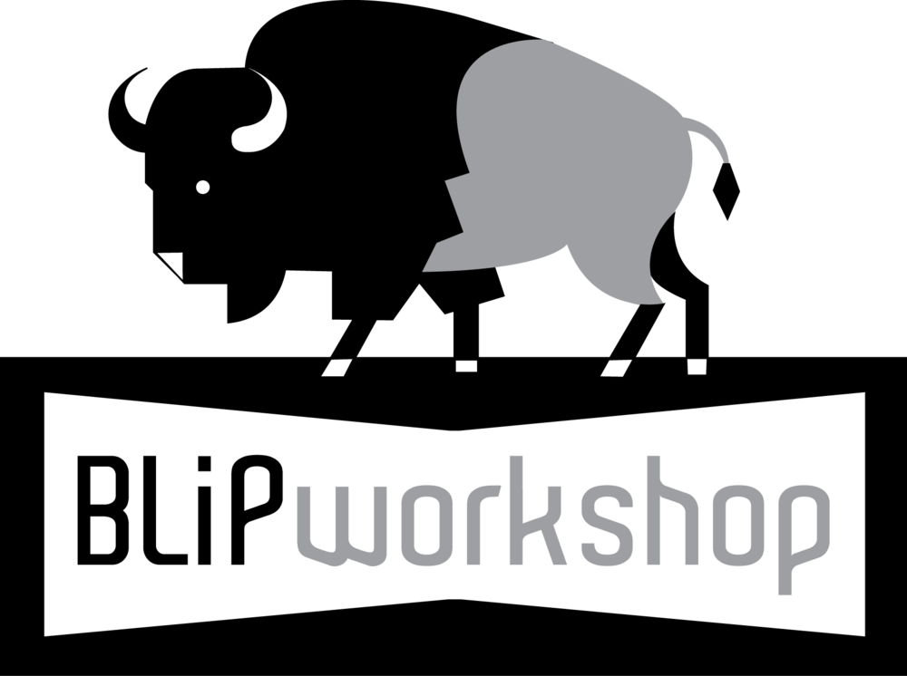 BLiP workshop