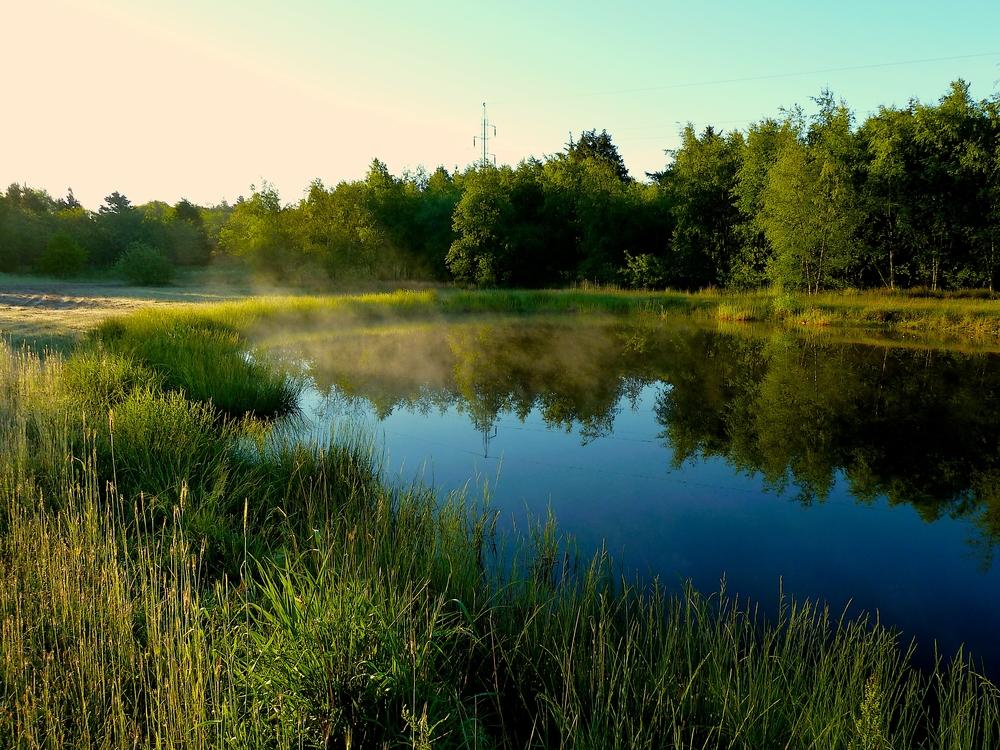 """Vores egen """"Karlsgårde sø"""""""
