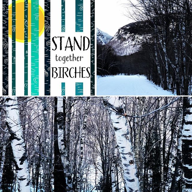 "In unity there is strength. When we stand together we grow together! Win a free set of ""STAND together BIRCHES"" cards to send a note of love and support to those that stand with you! It's important to have a solid support system and roots! I hope that you enter this giveaway and give these cards to friends and family that inspire you to grow!  Like this post, follow @peakandbirchdesigns and tag a friend that inspires you (and extra friends for extra entries) in the comments to win! On Sunday night, 3 winners will be randomly chosen to receive a free set of ""STAND together BIRCHES"" cards. The size is your choice, so check out the cards and sizes on Etsy at Peak and Birch Designs  www.etsy.com/shop/PeakandBirchDesigns and link in bio  #standtogether #supporteachother #standforwhatyoubelievein #womensupportwomen #givesupport #unityisstrength #unityiscommunity #supportdreams #togetherwegrow #togetherwerise #positivegrowth #growth #powerinunity #growlove #growsupport #supportdreams #peakandbirchdesigns #giveaway #freebiefriday"