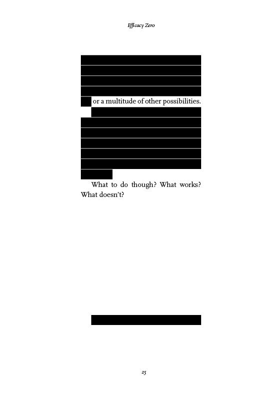 BookAshcroftWeb25.jpg