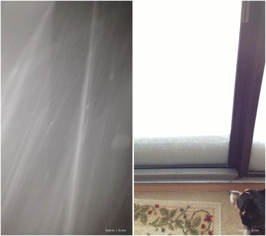 snow coming down.jpg