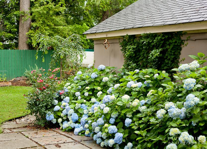 0512_Neels_Garden8.jpg