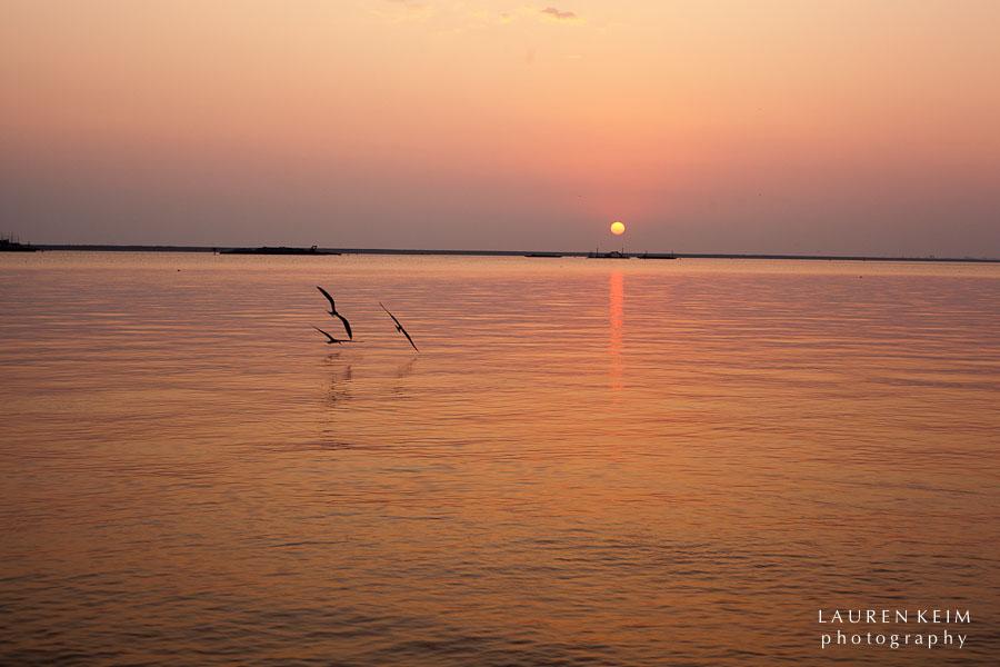0612_Elizabeth_Sunset14.jpg