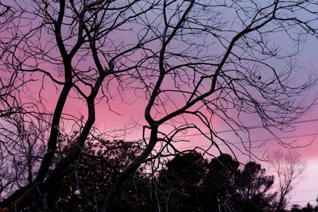 0112_night sky1.jpg