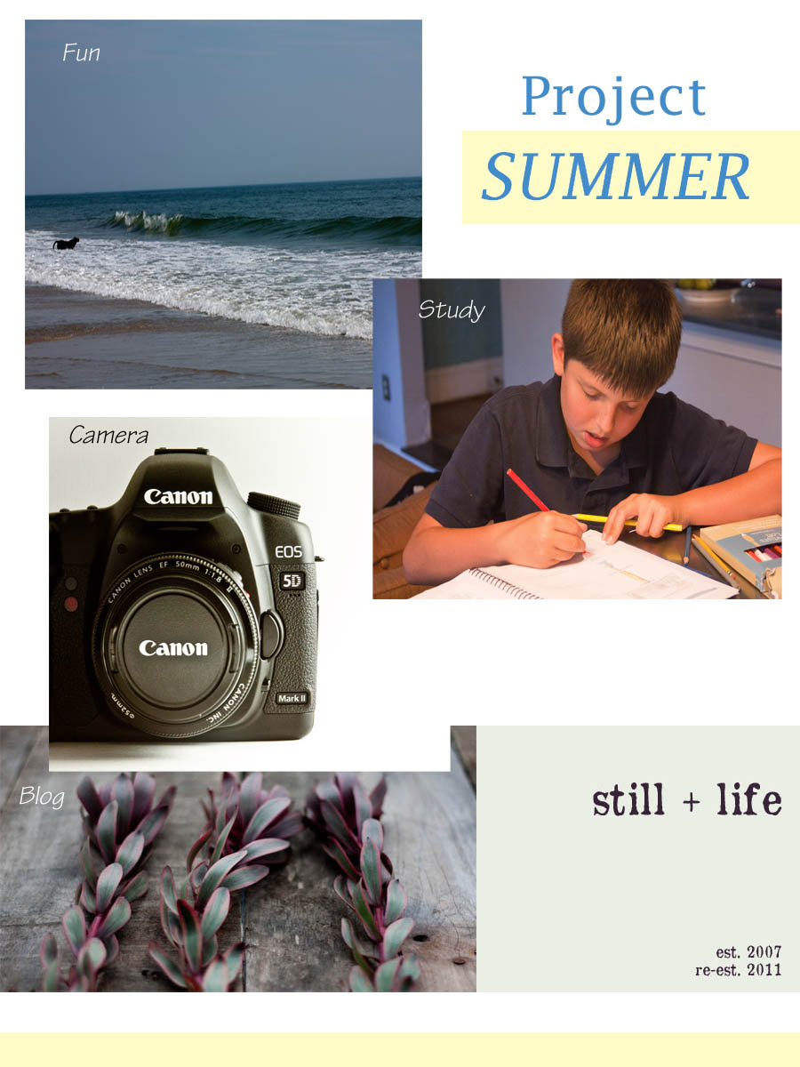 project summer.jpg