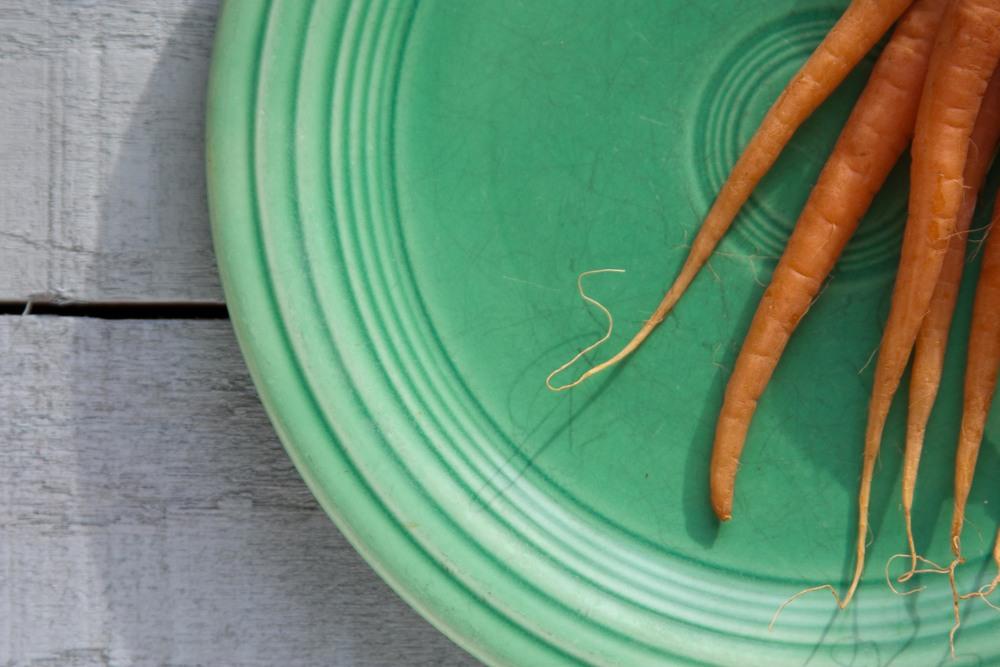 1211_carrots13.jpg