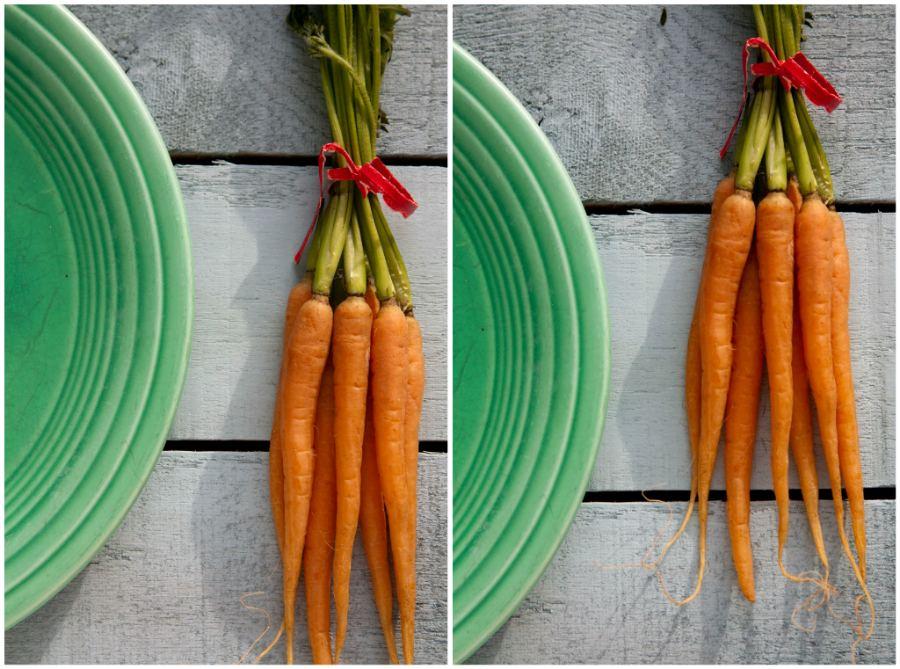 carrot_plate.jpg