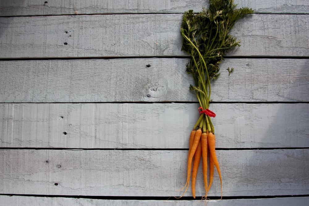 1211_carrots5.jpg