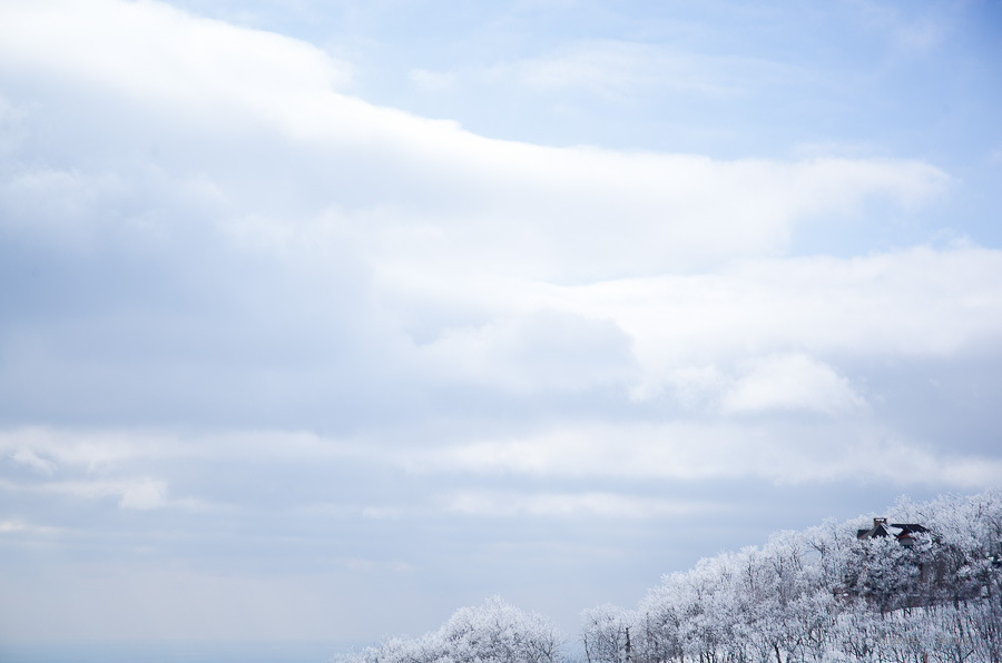 Dream Snow-8.jpg