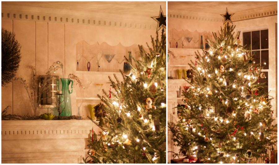 tree_collage.jpg