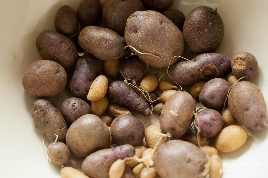 potatoes-4.jpg