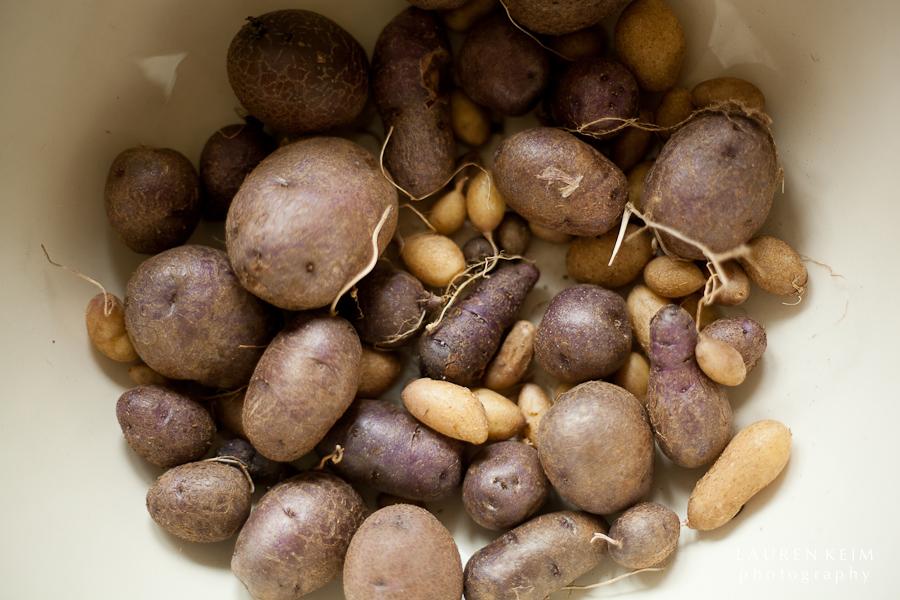 potatoes-3.jpg