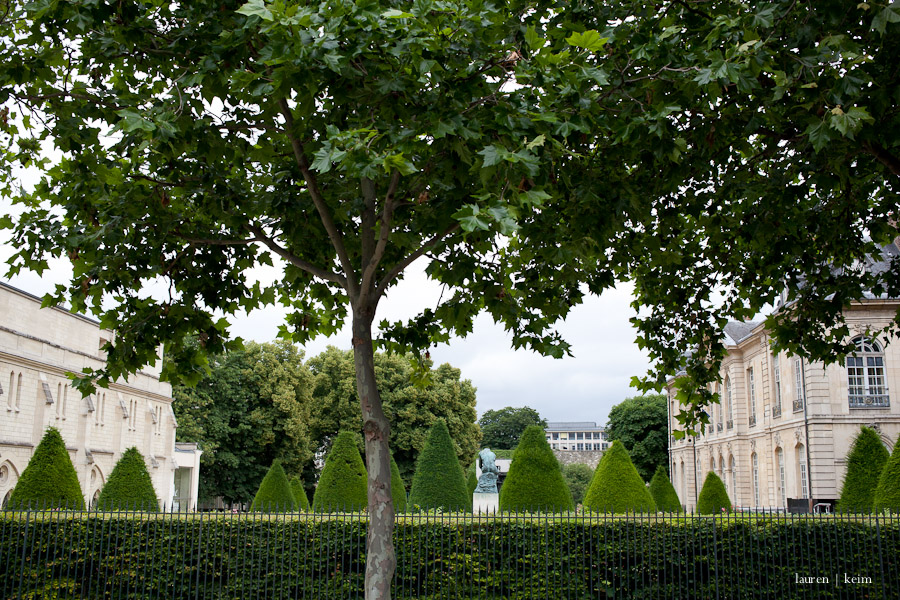 Rodin's garden