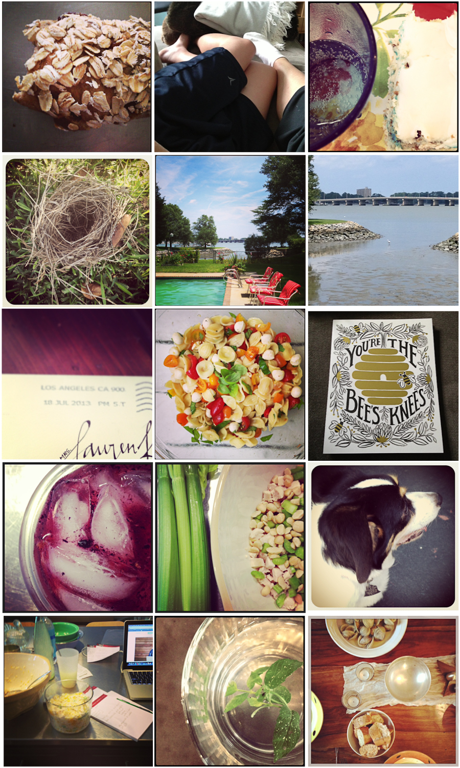 1. Museli bar from my favorite bread lady | 2. Post sleepover snuggle | 3. Birthday cake | 4. Found treasure | 5. Treasured time | 6. Local wildlife at low tide | 7. Unexpected delight | 8. Cheater pasta salad (recipe this week) | 9. Treasure from dear friends | 10. The cocktail (still) to be named later | 11. Cooking for the week | 12. Little Violet | 13. Busy day | 14. Refreshing water | 15. Sunday dinner