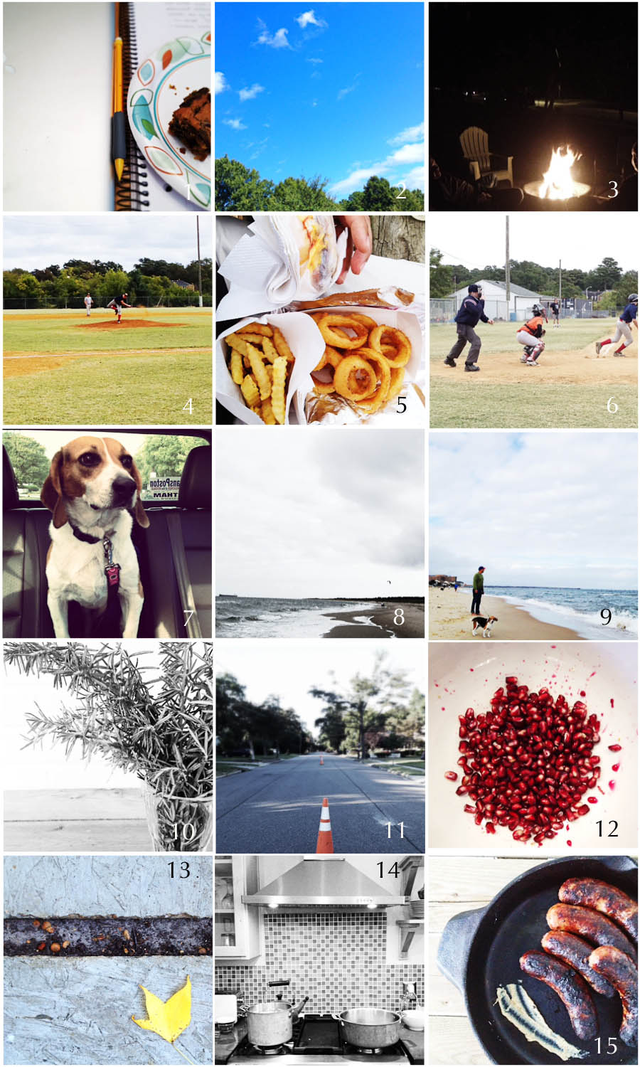 1. Friday meeting | 2. September sky | 3. Fire pit meeting | 4. Starting pitcher | 5. Ballpark food | 6. At bat | 7. Beagle on board | | 8. Black & White Beach | 9. Blowing in the wind | 10. Windowsill herbs | 11. Tiny project | 12. Seeds | 13. Autumn leaves | 14. Kitchen witchcraft | 15. Football food