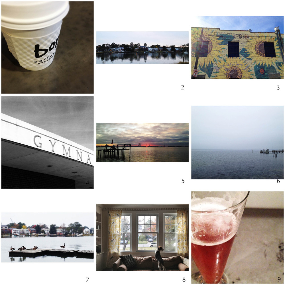 1. out of coffee! | 2. twilight on the river | 3. breakfast | 4. voting day (again) | 5. surprise sunset | 6. foggy morning | 7. goose walk | 8. on guard | 9. shandy sunday night