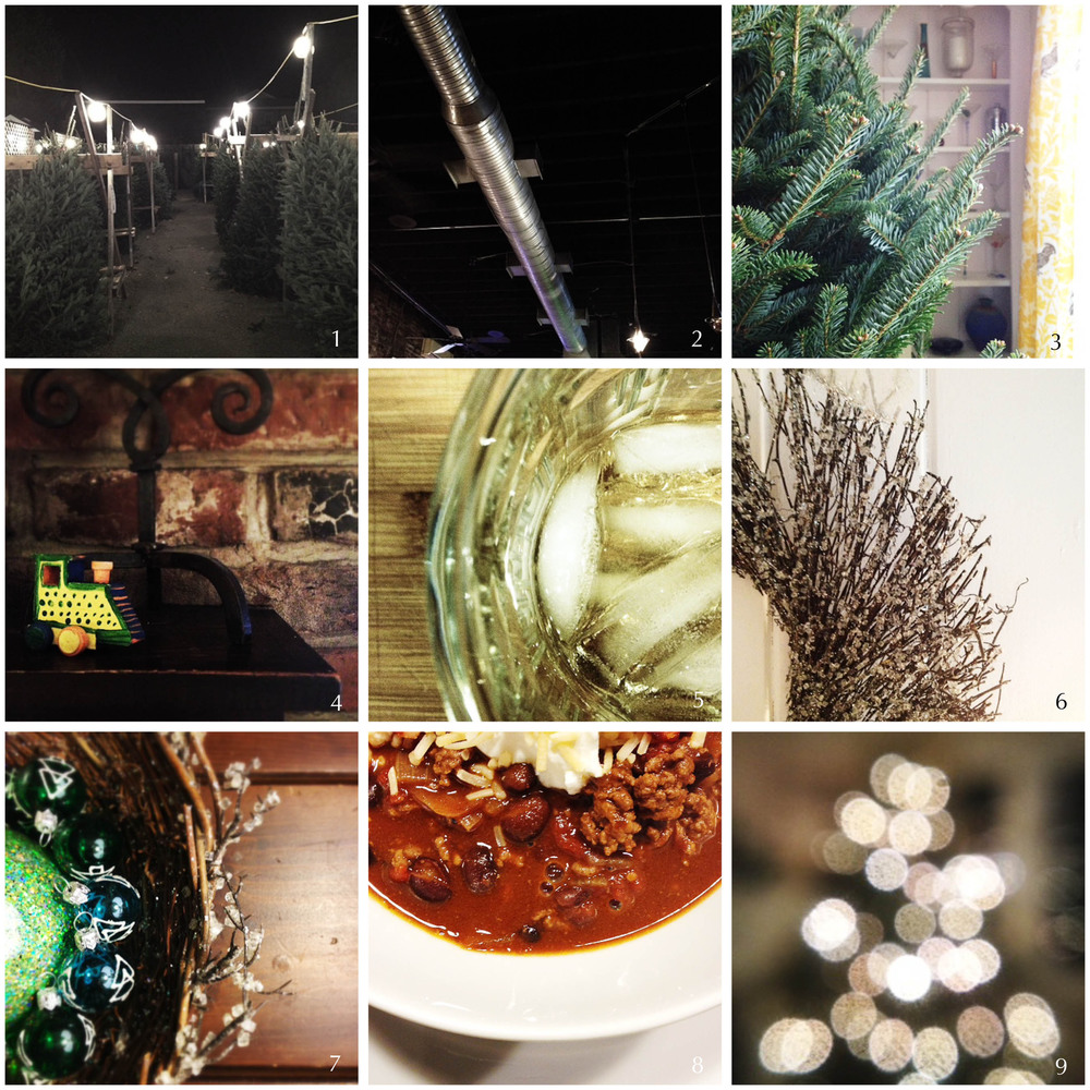 1. tree hunt | 2. local joint 3. in situ | 4. dinner with friends | 5. st. germain on ice | 6. ice wreath | 7. deco time | 8. chili | 9. success