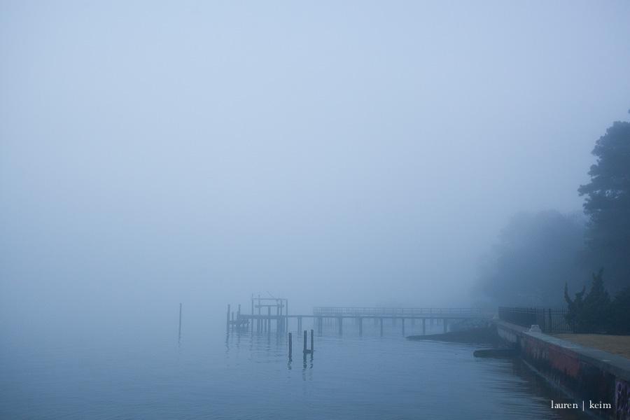 fog-3.jpg